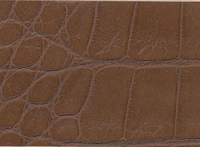 Cocoa Croc